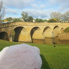 """""""Have a look at Australians older bridge still in use. I made a stop in Richmond to have a look at it. It was build by convicts and apparently their boss was found on the bottom of this river... #tassie #tasmania #blobfishtravels #lifeasablobfish #traveling #travelgram #wanderlust #fernweh #blobfish in #australia #richmond #oldestbridge"""" by @the.blobfish. #fslc #followshoutoutlikecomment #TagsForLikesFSLC #TagsForLikesApp #follow #shoutout #followme #comment #TagsForLikes #f4f #s4s #l4l #c4c…"""