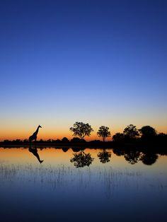 Sunrise in Okavango Delta, Botswana