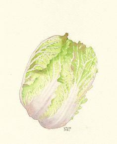 2242.jpg - イラストレーター大崎吉之の絵