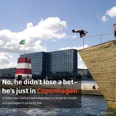 A recipe for trouble or just another summer day in Copenhagen?  #copenhagen #denmark #sfocph