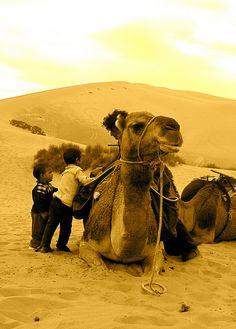 Nomadic Life . Sahara . Morocco