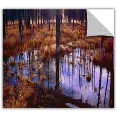 Dean Uhlinger Yellowstone Morning Removable Wall Art, Size: 18 x 18, Brown