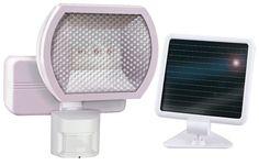 1 Light Solar Motion Floodlight