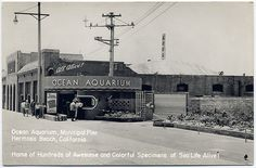 Long gone Hermosa Beach California attraction. Unknown Photographer.
