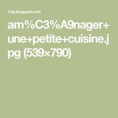 am%C3%A9nager+une+petite+cuisine.jpg (539×790)
