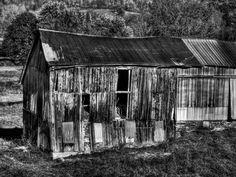Photograph AUTUMN #82 BW by ROBERT CARROLL on 500px
