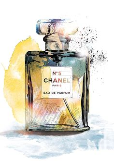 Fragrance Illustrations on Behance