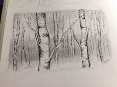 how to draw birch tree - : Yahoo Image Search Results