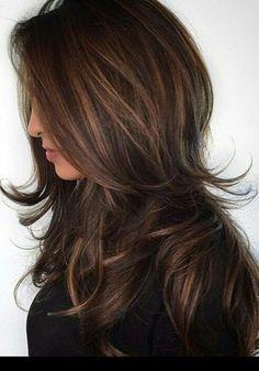 Chololate hilites & long haired shag layering !
