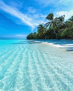 The most detailed travel guide about the Maldives for every budget! Learn everything about the Maldives and plan your the best vacation! Beautiful Places To Travel, Beautiful Beaches, Dream Vacations, Vacation Spots, Vacation Images, Vacation Travel, Cruise Vacation, Beach Travel, Travel Goals