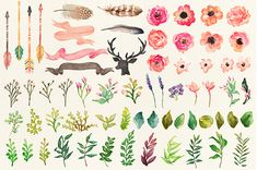 76 PNG(300dpi) hand drawn watercolor graphic elements,Each element on an individual png with transparent background.-Flowers,-Leaves-Arrows-Feathers-Flower posies-Floral wreathes-Ribbons-Deer