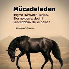 Good Sentences, Allah Islam, Math, Quotes, Istanbul, Princess, Cool Words, Quotations, Math Resources