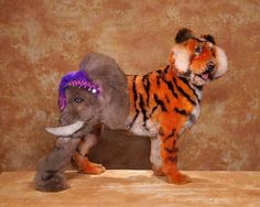 toilettages de chien insolites tigre   Toilettages de chien insolites   toilettage Ren Netherland photo maquillage image chien body painting