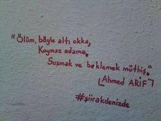 ~ Ahmed Arif