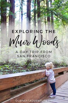 Outdoor Travel usa Quick tips to make the most of a Muir Woods day trip from San Francisco. San Francisco Day Trip, San Francisco Travel, San Francisco With Kids, Us Travel Destinations, California Travel, Northern California, California Road Trips, Michigan Travel, California Living