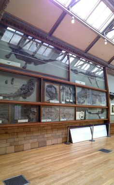 ... and table tops in place, ready to go, for some of tonight's Science Stations nhm.ac.uk/visit-us/whats… #SU2012 pic.twitter.com/yZtRosb6