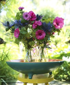 Lavatera - Pink Inspiration pictures for florists