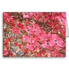 Mariaco: Greeting Cards: Zazzle.com Store