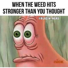 Funny Weed Memes, Weed Jokes, 420 Memes, Funny Spongebob Memes, Weed Humor, Funny Quotes, Stoner Humor, Puff And Pass, Frases