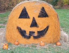 101 Things to do in Kansas City this Fall -- pumpkin patches, apple orchards, festivals & trick or treat fun!