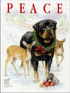 Merry Christmas to all.  (Rottie)