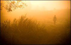 Lonely morning by mjagiellicz.deviantart.com on @DeviantArt