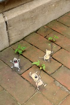 The Seedling Parade Corps: two-thirds unbridled enthusiasm, one-third seething disapproval.
