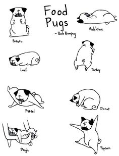 Maybe it's because pugs love food so much but have you ever noticed how so many of their positions resemble food?