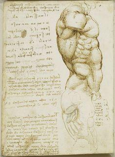 Leonardo da Vinci (Vinci - Recto: The male torso, with notes. Verso: The muscles of the torso Male Figure Drawing, Figure Drawing Reference, Guy Drawing, Anatomy Reference, Life Drawing, Drawing Sketches, Man Anatomy, Anatomy Drawing, Anatomy Art