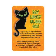 Legend of the Black Cat Pin & Card Sets - OrientalTrading.com $8.50 for 12