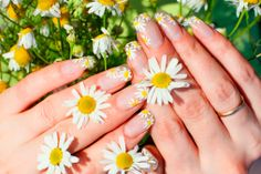 For spring and summer why not try some nature inspired nail art looks? Ho pretty is this nail art design based on Cute Summer Nail Designs, Cute Summer Nails, Simple Nail Art Designs, Beautiful Nail Designs, Beautiful Nail Art, Spring Nails, Diy Daisy Nails, Daisy Nail Art, Floral Nail Art