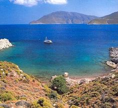 gr-best for wildlife City Branding, Visit Greece, Greece Islands, Wildlife, Outdoors, In This Moment, Dreams, Spaces, Holidays