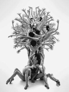 human tree - [someone else's caption]