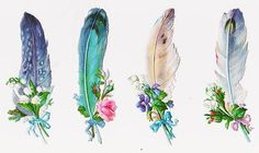4 Victorian Die Cut Scraps Feathers with Flowers: