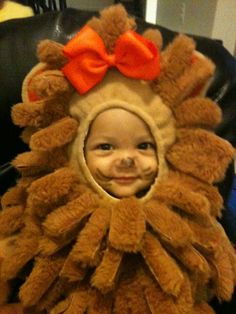Halloween Costumes, Teddy Bear, Holidays, Toys, Animals, Vacations, Animales, Holidays Events, Animaux