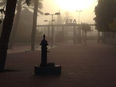 Mañana fría de noviembre en el patio del colegio la niebla tamiza los primeros rayos de sol de la mañana