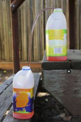 Your preschooler can learn how to siphon water with just two bottles and a plastic tube in this fun, educational science activity. Preschool Science Activities, Primary Science, Science Guy, Kindergarten Science, Science Fair, Science For Kids, Science Projects, Science Ideas, Teaching Science