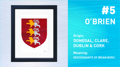 The Top Ten Most Popular Irish Surnames from Painted Clans. Hand painted Irish coat of arms with a modern twist. Brian Boru, Irish Coat Of Arms, Irish Roots, Donegal, Irish Men, Surnames, Most Popular, Top Ten, Anniversary Gifts