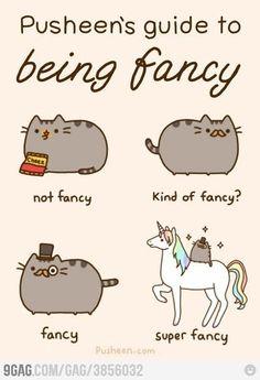 always be super fancy