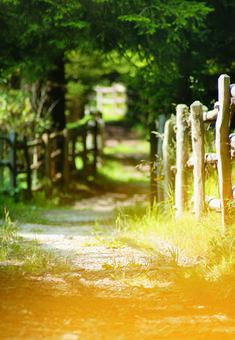 Tiroler Sommer erleben #klockerhof #familiekoch #dashotelfürentdecker #zugspitzarena #tirol #sommer #wandern #biken Country Roads, Mountain Landscape, Environment, Hiking, Summer