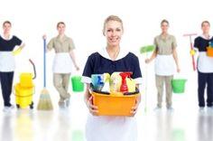 Carpet Cleaners Paddington