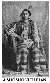 Native Americans in Idaho