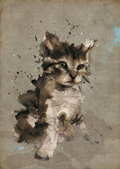 Ilustração de gato 14
