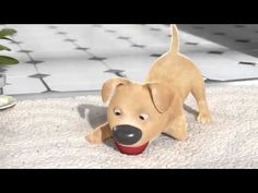 short animation film will make you cry # cczoon فيلم سيجعلك تبكي Disabled Dog, Pixar Shorts, Habits Of Mind, Movie Talk, Film School, Make You Cry, Independent Films, 3d Animation, Animation Mentor