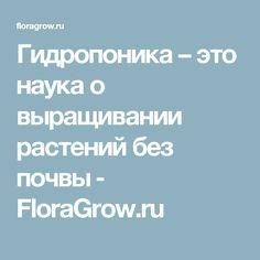 Гидропоника – это наука о выращивании растений без почвы ‒ FloraGrow.ru