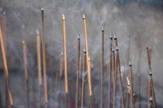Cotia. Templo Zu Lai. Para ajudar os bons pensamentos a fluir, você pode atirar uma moeda na fonte dos desejos, escrever o seu pedido em um papel e pendurar em uma árvore, ou ainda acender um incenso para seus antepassados.