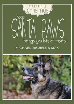 And for doggies, Santa Paws Pet Dog Custom Photo Christmas Cards in 33 colors!