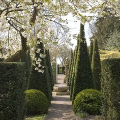 wollerton hall gardens - Google Search