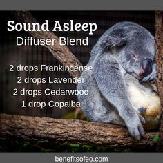 Sound Asleep Diffuser Blend Can't get to sleep? That was me a few years ago. I had a hard time relaxing before bed. This essential oil blend is very relaxing and it is one of my favorite blends for sleep. What is your favorite sleep blend? Essential Oils For Sleep, Essential Oil Diffuser Blends, Doterra Essential Oils, Young Living Essential Oils, Relaxing Essential Oil Blends, Oils For Energy, Helichrysum Essential Oil, Cedarwood Oil, Aromatherapy Oils