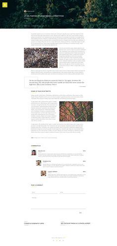 Antica — Multipurpose Business Agency/Personal Portfolio PSD Template by torbara